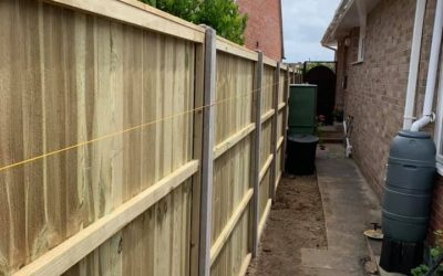 Garden landscape and new fencing